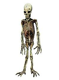 Mutant Skeleton Made of Latex