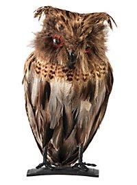 Night Owl Halloween Decoration