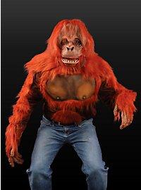 Orangutan Chest