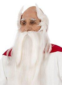 Perruque et barbe de Panoramix