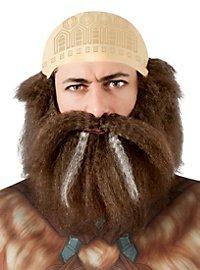 Perruque et barbe Dwalin Le Hobbit