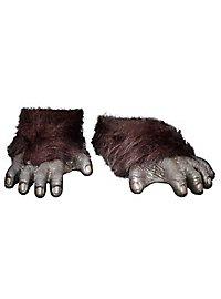 Pieds de singe foncés