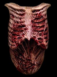 Plastron zombie The Walking Dead