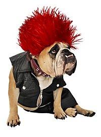 Punk Déguisement de chien