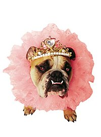 Queen Dog Costume