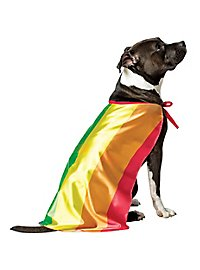 Rainbow flag dog costume