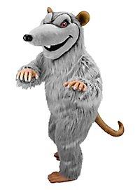 Rat brun Mascotte