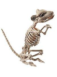 Rattengerippe Halloween Deko