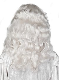 Reine des neiges Perruque