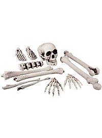 Schädel und Knochen Deko
