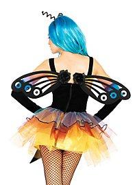 Schmetterlingsflügel Pfauenauge