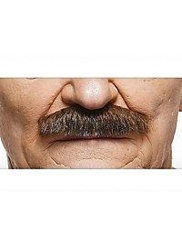 Schnauzer Schnurrbart