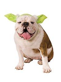 Serre-tête Yoda Star Wars pour chien