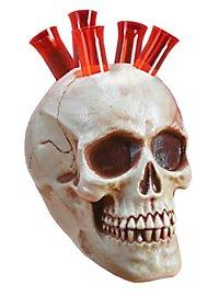 Skull Shots Halloween Decoration