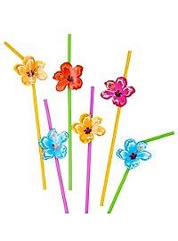 South Sea straws 6 pieces