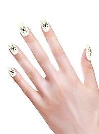 Spinnen Fingernägel