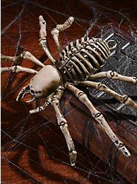 Spinnenskelett Halloween Deko