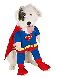 Superman Dog Costume