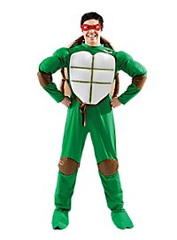 Teenage Mutant Hero Turtles Costume