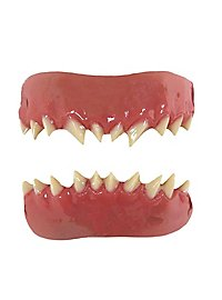 Teeth FX Minion Teeth