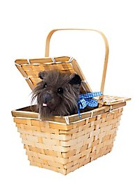 Toto der Terrier im Korb