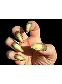 Vergilbte Hexen Fingernägel Deluxe