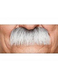 Walross Schnurrbart