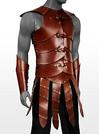 Warrior Leather Armor brown
