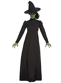 Wicked Witch witch costume
