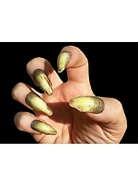 Yellowed Witch Finger Nails Deluxe