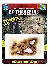 Zombie Kieferknochen 3D FX Transfers