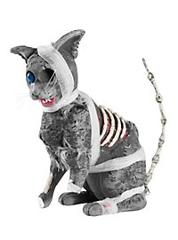 Zombie Kitty Halloween Decoration